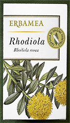 Pianta-officinale-Rhodiola-rosea